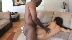 Hot brunette with a big round booty Gia feeds her desire for black cock