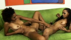 Krystal and Misty Stone finger and toy their twats, then use a double dildo