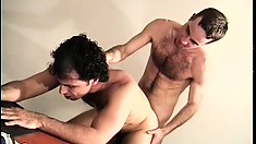 Hairy gay guy gets a guy into his office for a quick barebacking