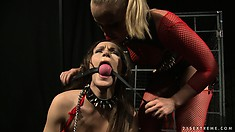 Mistress Kathia's dungeon has two kitties in the cage and one gets released for action
